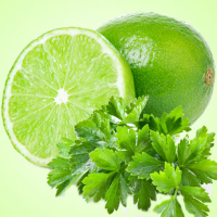 Fragrance Oil - Lime Cilantro (clearance)