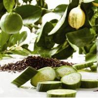 Fragrance Oil - Earl Grey & Cucumber (JM type)