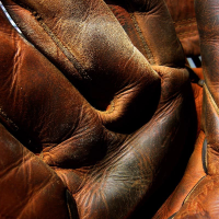 Fragrance Oil - Leather