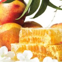 Fragrance Oil - Nectarine Blossom Honey (JM type)