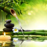 Fragrance Oil - Bamboo Pikake