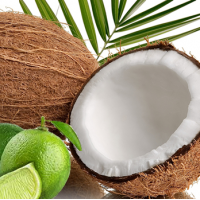 Fragrance Oil - Coconut Lime Breeze (type)