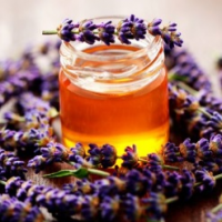 Fragrance Oil - Manuka Honey & Lavender