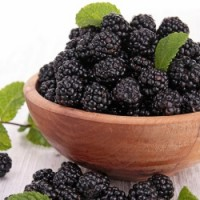 Fragrance Oil - Blackberry Patch
