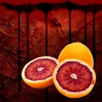 Fragrance Oil - Blood Orange