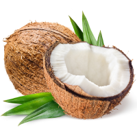 Fragrance Oil - Coconut Bay (Type)