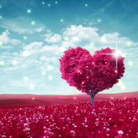Fragrance Oil - Endlessly in Love (type)