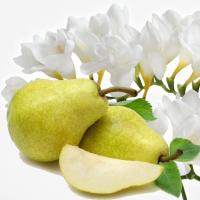 Fragrance Oil - English Pear & Freesia (JM type)