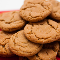 Fragrance Oil - Gingersnap Cookie
