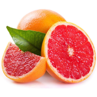 Fragrance Oil - Grapefruit