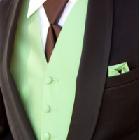 Fragrance Oil - Green Irish Tweed (type)