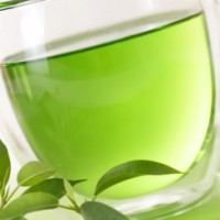 Fragrance Oil - Green Tea