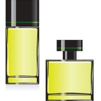 Fragrance Oil - Joop! Femme (type)