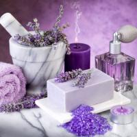 Fragrance Oil - Lavender Luxury