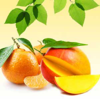 Fragrance Oil - Mango Tangerine