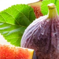 Fragrance Oil - Mediterranean Fig