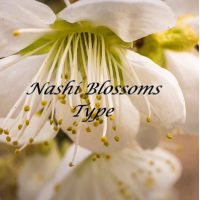 Fragrance Oil - Nashi Blossom (JM type)