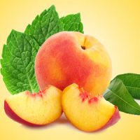 Fragrance Oil - Nectarine Mint