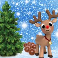Fragrance Oil - Reindeer Poo