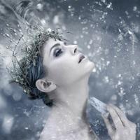 Fragrance Oil - Sugar Fairy (type)