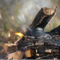 Fragrance Oil - Woodsmoke